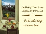 St David's Day - Do The Little Things
