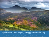 Happy St David's Day - The Moelwyn's (Courtesy of Graeme Pettit)